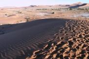 Ponieważ piasek nie zdążył się jeszcze rozgrzać, spacerujemy po grzbietach okolicznych wydm