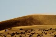 Wieje bardzo silny pustynny wiatr