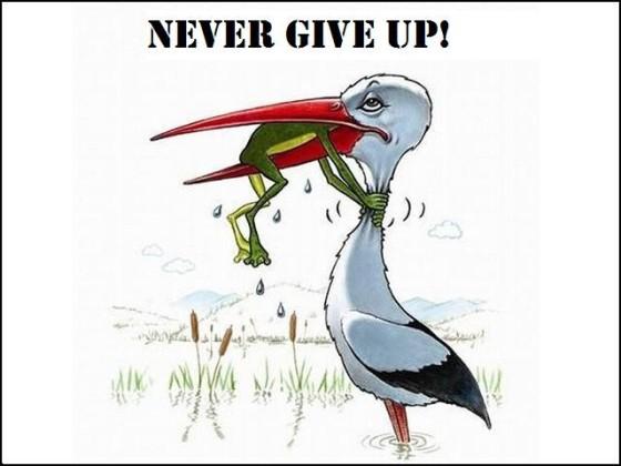 Nigdy się nie poddaj!