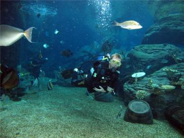 uShaka Marine World