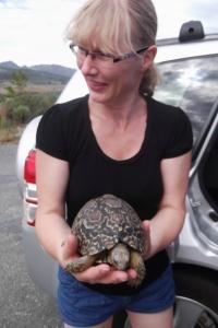 Ratujemy żółwia