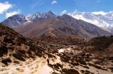 W drodze do Dingboche krajobraz coraz bardziej pustoszeje. Nie widac tez Mt. Everest. W Dingboche, na wysokosci 4530 mnpm spedzamy kolejna noc. Robi sie juz zimno.
