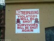 No i przypadkiem uciekając przed zwierzakami nie wejdźcie na cudze podwórko... Możecie nie przeżyć!